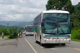Public bus.jpeg