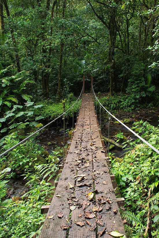 _DSC4167-puente-El Silencio.jpg