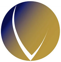 VISION_logos-18 (2).jpg