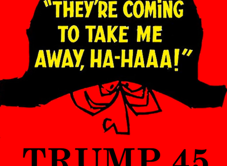 """Communique 9-25-2020 """"Napoleon 45 They're Coming To Take You Away Ha Haaa!"""""""