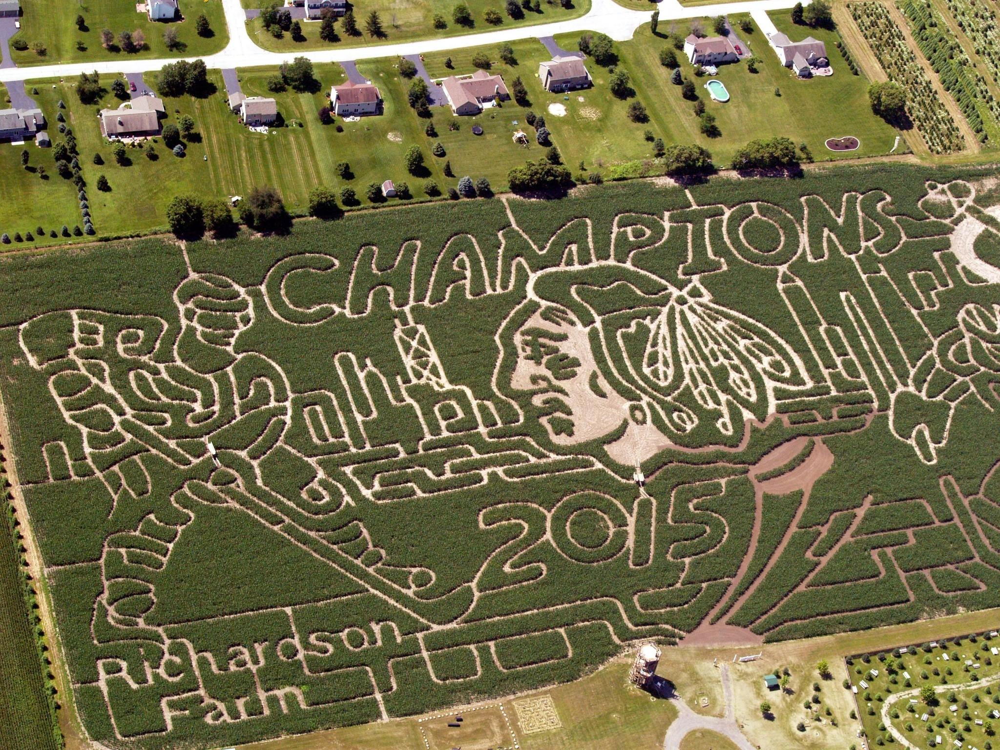 Richardson Corn Maze