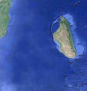Madagascar_à_sa_place_avant.jpg