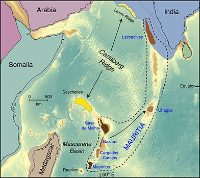 Mauritia et autres.jpg