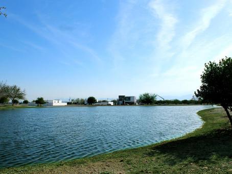 Conoce los 5 increíbles lagos Ave de nuestro Residencial