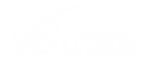 Volupta Logo_1C_White_no tagline.png