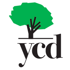 YCD_tree_no_BG_50.png