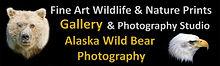 Alaska Wild Bear Photography.jpg