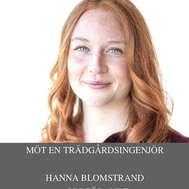 Hanna Blomstrand