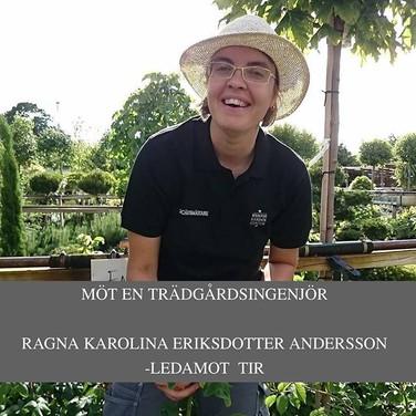 Ragna Karolina Eriksdotter