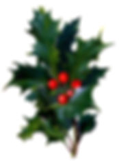 Victorian-christmas-clip-art-holly-with-