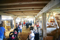 Winterberry Farm Opening