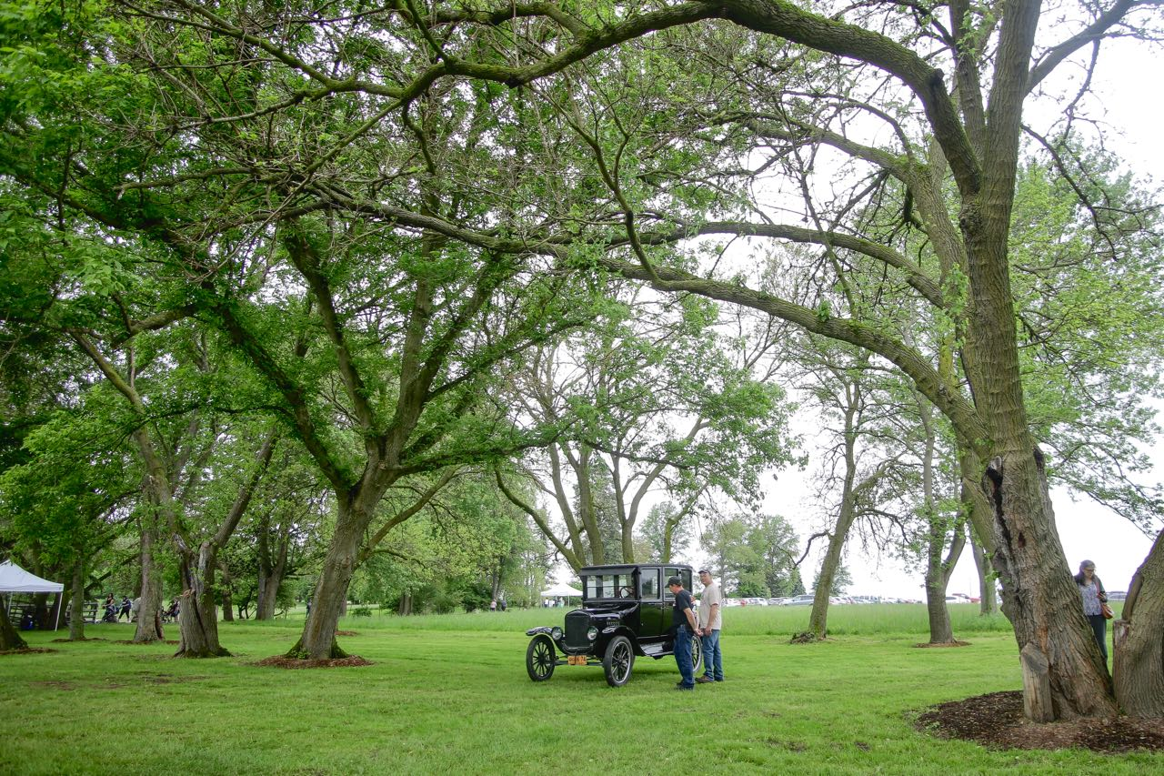 Winterberry Farm Grand Openingy