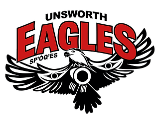 psUnsworthEagles_large-PNG.png