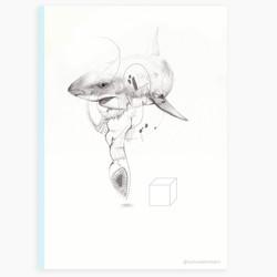 sharky marlarkey
