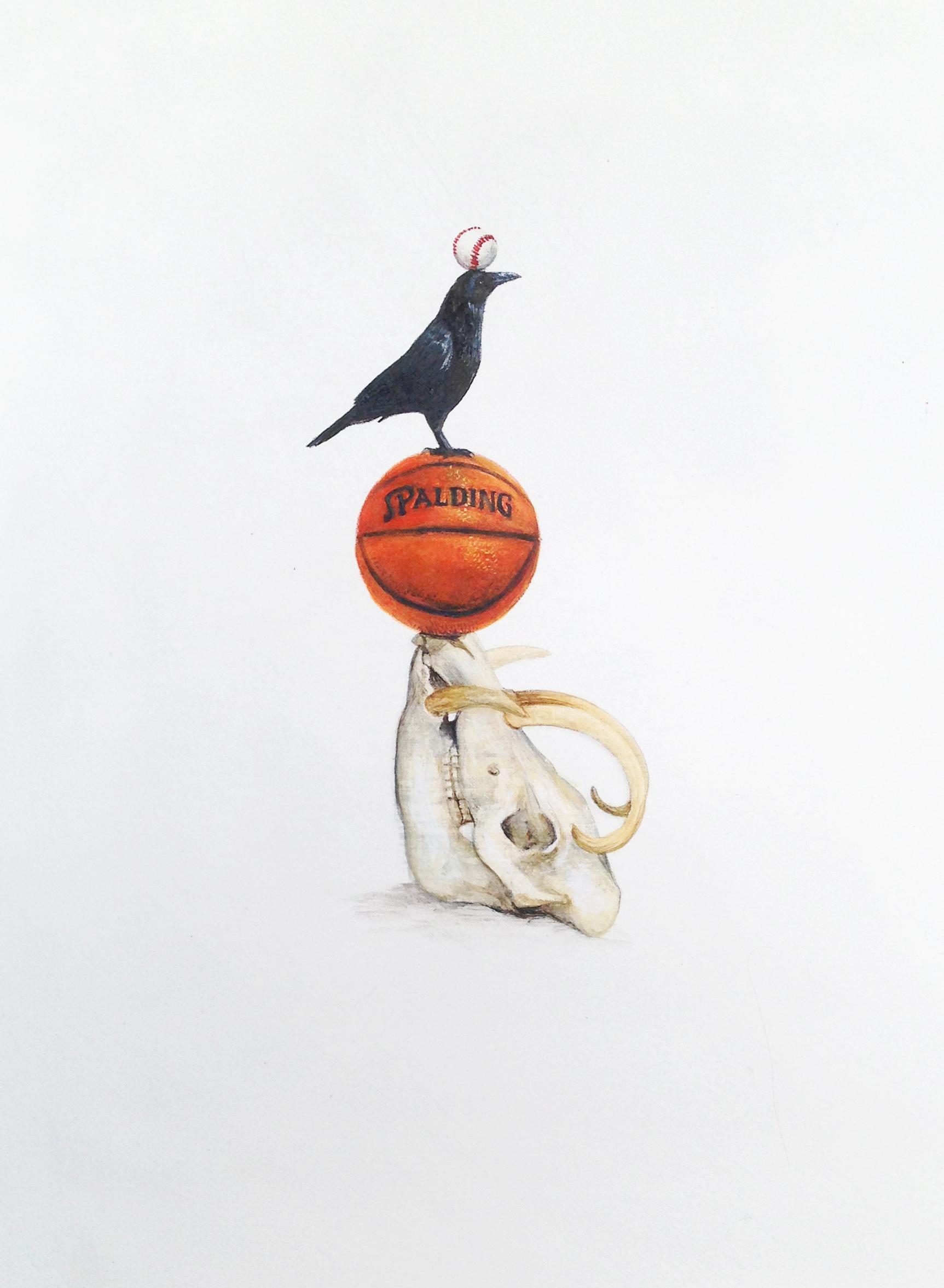 basket babirusa upload