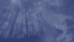Screenshot 2020-04-20 at 2.22.27 PM - Ed