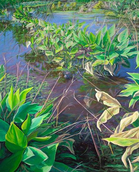 Everglades III