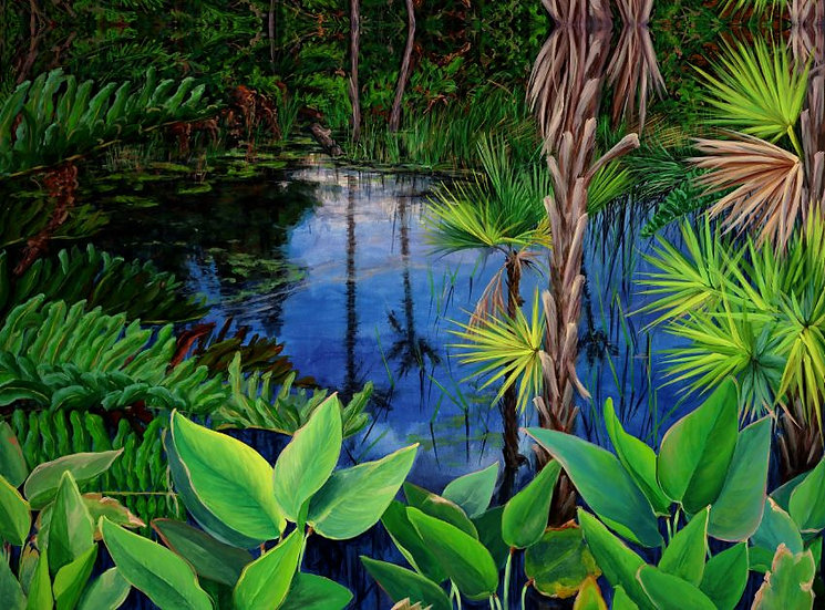 Everglades II