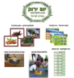 יום ירוק קצר כולל תמונות-2.jpg