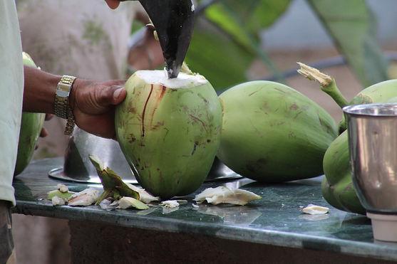 coconut-2537183.jpg