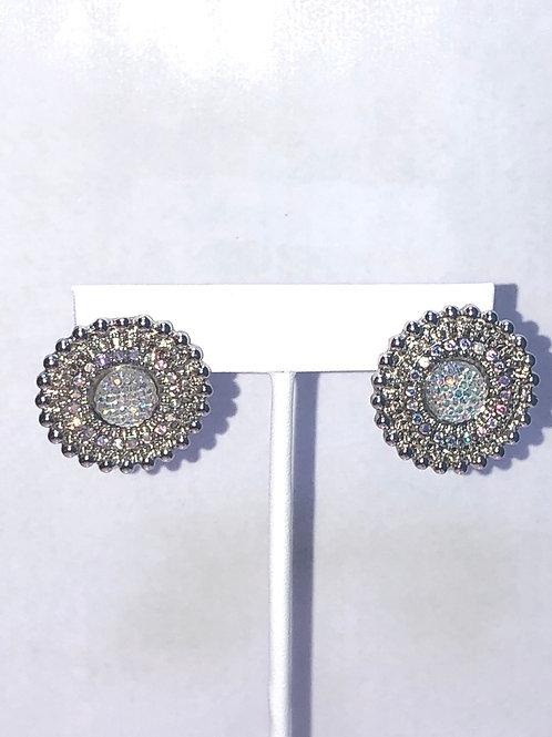 Dazzling Stud Earrings