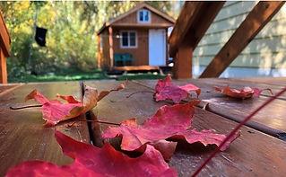 Fall Leaves Wallpaper.jpg