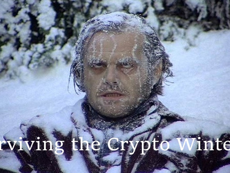 Surviving the Crypto Winter
