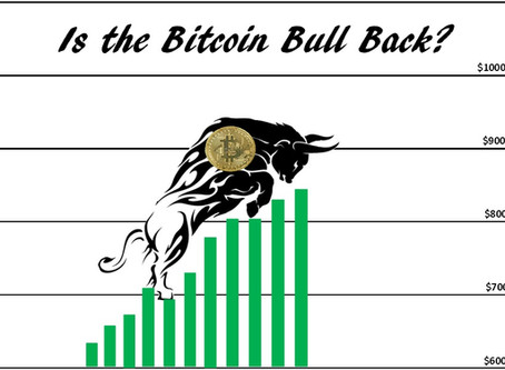 Is the Bitcoin Bull Back?