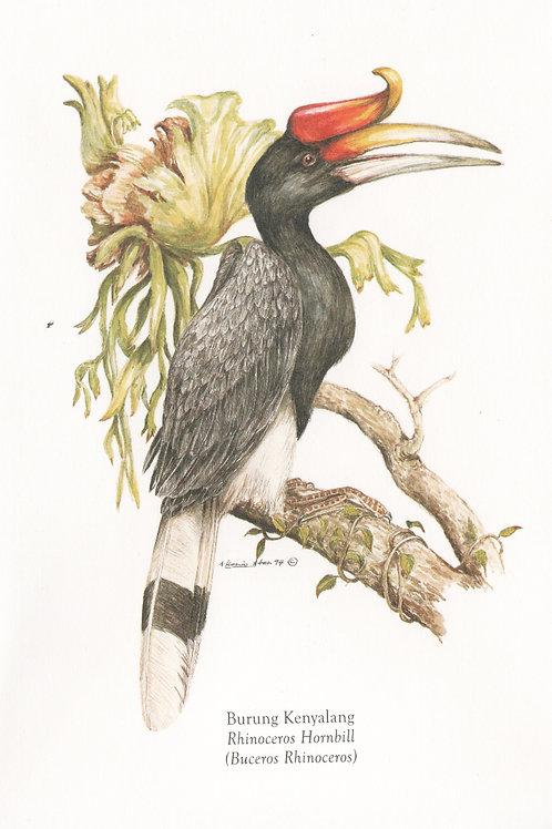Postcards: Birds of East Malaysia