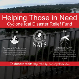 Cyclone Idai Relief