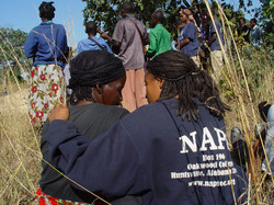Picture zambia2 149.jpg