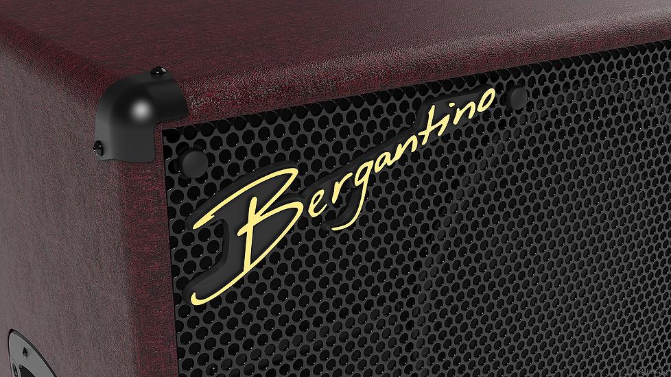Bergantino HG310