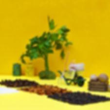spices_1080.jpg