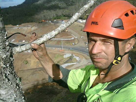 Tree surgeon aborist Brisbane area company