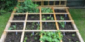 square-foot-garden.jpg