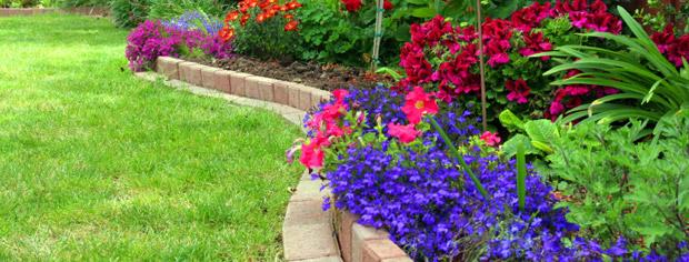 Lawn Care Greece NY