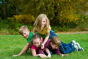 Lawn Care Services in Greece NY