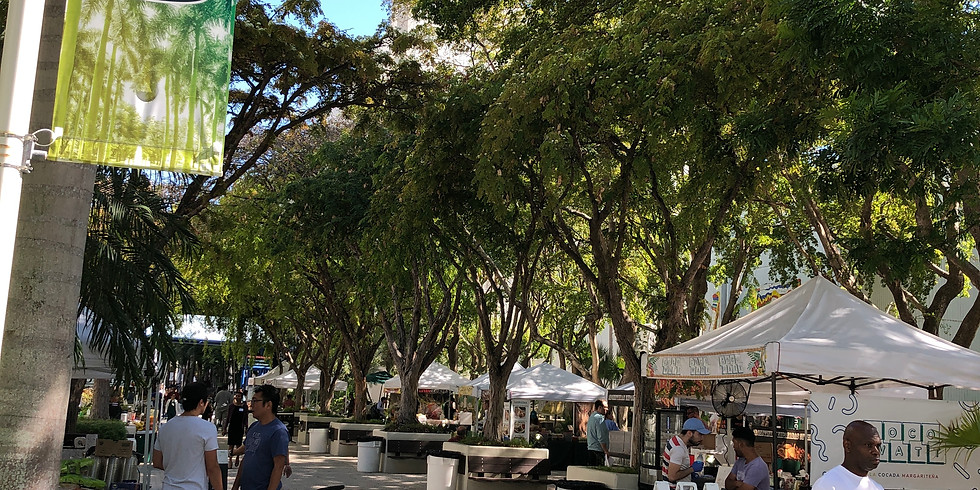University of Miami Jackson Campus Market