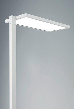LED Zante Floor Up & Down 25930/Floor