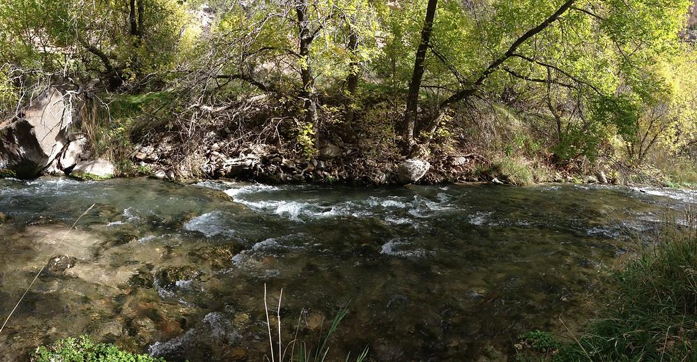 Jones' Creek