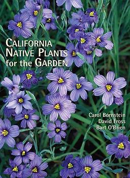 native plants.jpg