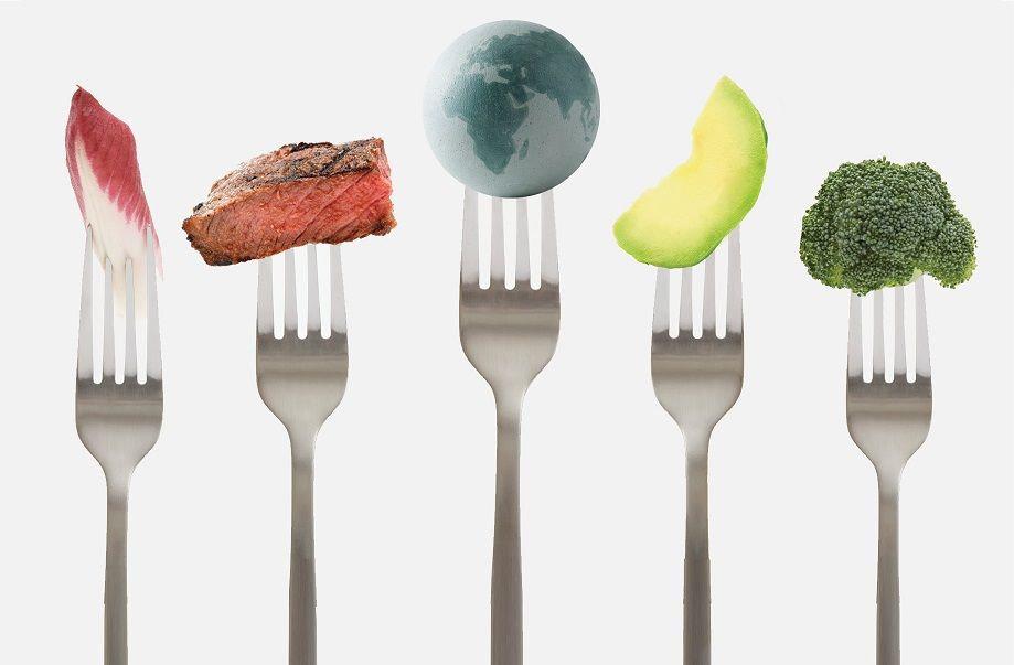 food fix 1.jpg