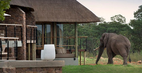 Mhondoro Game Lodge Villa Welcome Children