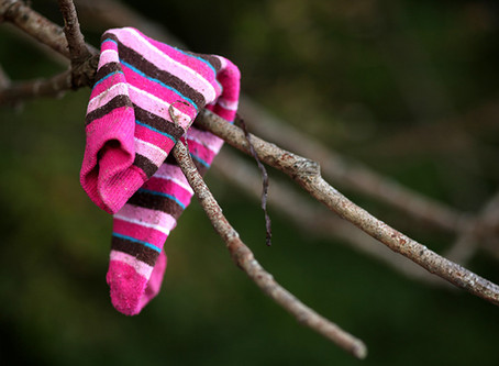 Mystery of Missing Socks Is Solved!