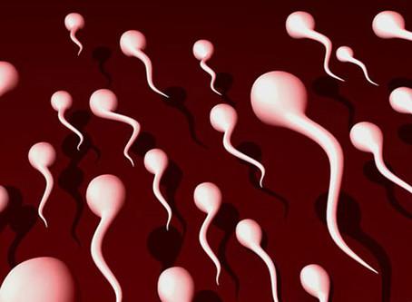 Seven Reason Your Man Should Save His Semen
