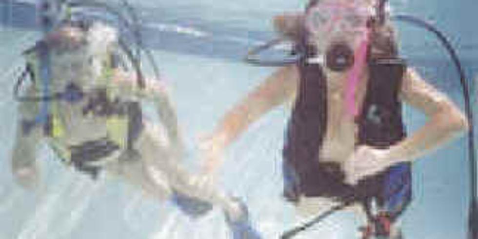 Diving in the Keys