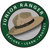 2020-11-17 10_25_51-junior ranger - Goog