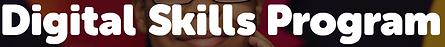 2020-11-30 14_00_43-Digital Skills Progr