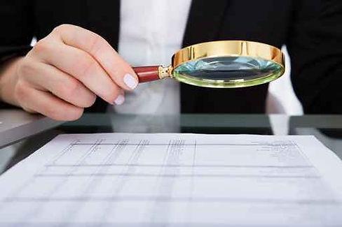 Paim Consultoria - Auditoria