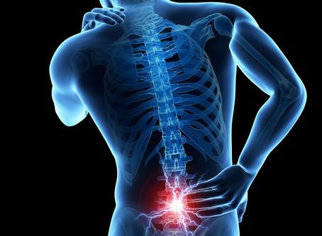 Você já teve dor lombar? Conheça as causas e como tratá-la